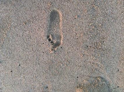 Little girl foot